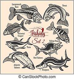 t-shirt, projeto fixo, peixe, americano, criativo, logo.,...