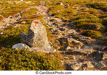 T sign turistforening mountain landscape Norway national park Dovre