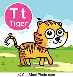 T Tiger color cartoon and alphabet for children to learning vector illustration eps10