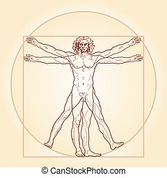 ta, vitruvian osoba, (homo, vitruviano)