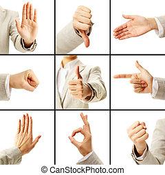 taal, van, gebaren