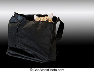 tabby cat hiding in black bag