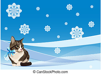 tabby cat on the winter background