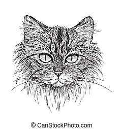Tabby Cat Portrait - Detailed vector from my pen & ink...