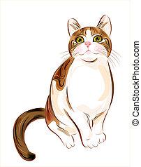 tabby, gatto zenzero, disegnato, ritratto, mano