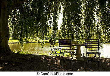 Table and chairs next to a pond