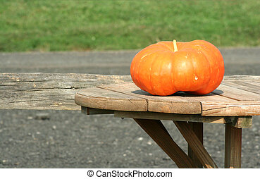 table, pumkin