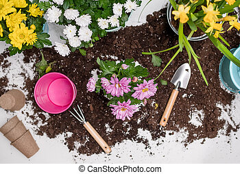 Table with soil, plants, watering can, flower pot