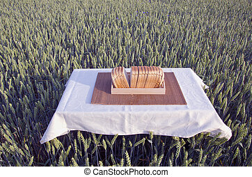 table with white bread in summer wheat field
