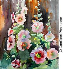 tableau aquarelle, de, les, beau, fleurs, mallow.