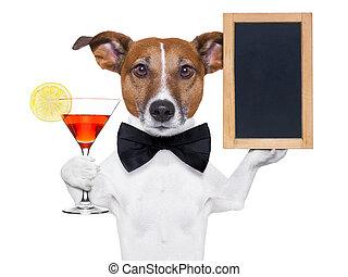 tableau noir, cocktail, chien