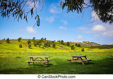 tables, пикник