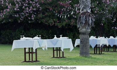 Tables, served for dinner on green lawn. Open air...