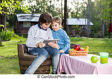 tabletta, táborhely, számítógép, testvér, használ, mosolygós