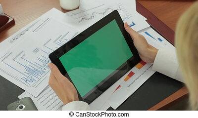 tabliczka, biuro, ekran, zielony, używa, dziewczyna