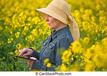 tabuleta, agricultor, oilseed, rapeseed, femininas, digital, cultivado