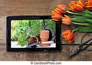 tabuleta, com, jardim, cena, e, tulips