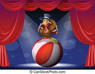 tacchino, compiendo, palla, palcoscenico