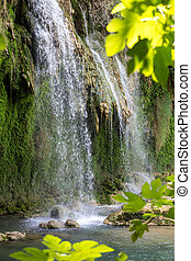 tacchino, natura, parco, kursunlu, cascata, antalya.