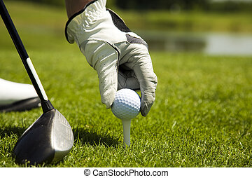 taco golfe