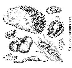 taco, kreslení, s, vegetable., tradiční, mexican food, vektor