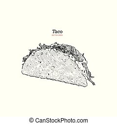 Taco. Mexican traditional food vector hand drawn illustration.