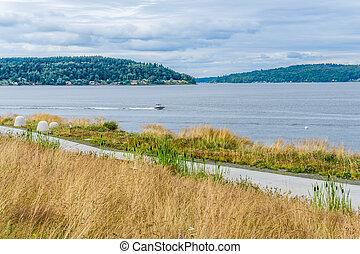 Tacoma Park Landscape
