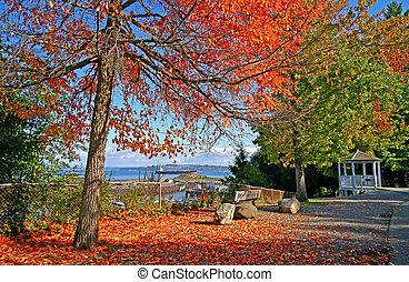 Tacoma, park