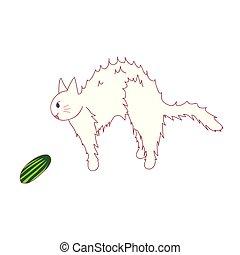 tacto, ver, espantado, cucumber., gato