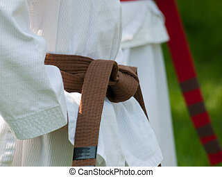 Tae Kwon Do school practice on lawn in the park.