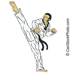 taekwondo., 武道