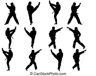 taekwondo fighter collection silhouetts