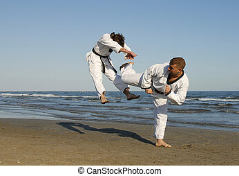 taekwondo, kickboxing - training of the two young men on the...