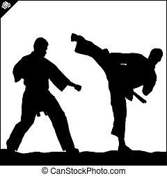 taekwondo, lucha, karate, escena