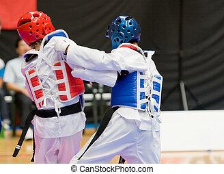 Taekwondo - Martial arts competitors in action