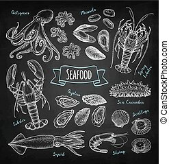 tafelkreide, skizze, meeresfrüchte