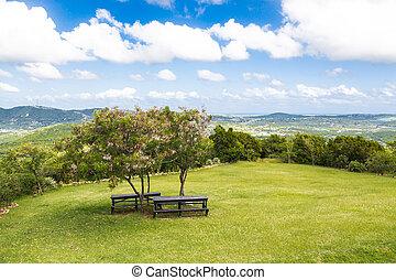 tafels, picknick, twee, heuvel, onder, kleine, tees