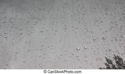 tag, wasser, regnerisch, tropfen, glas