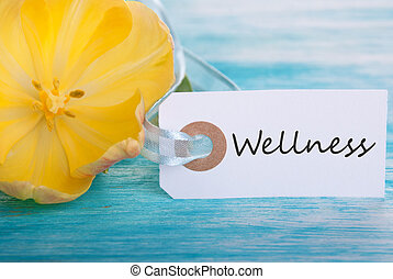 Tag with Wellness