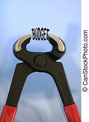 taglio, budget, pinze