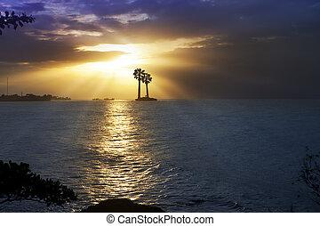 tahiti., oceano, polynesia., sunset.