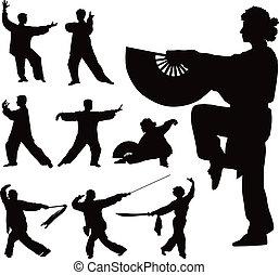 tai-chi , μικροβιοφορέας , απεικονίζω σε σιλουέτα