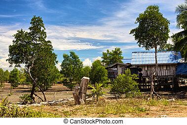 tailandés, aldea