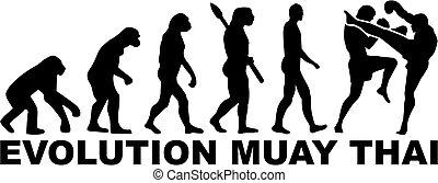 tailandés, muay, evolución