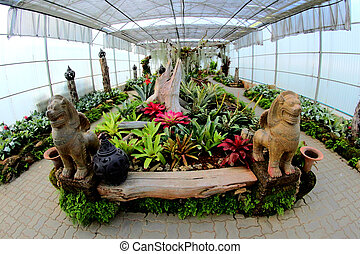 tailandia, botánico, chiangmai, jardín, sirikit, reina