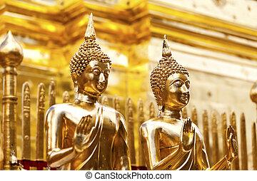 tailandia, buddha, estatuas, templo