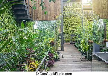 tailandia, passeio, jardim, maneira