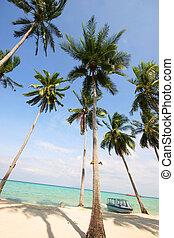 tailandia, spiaggia