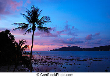 tailandia, tramonto, spiaggia patong, phuket