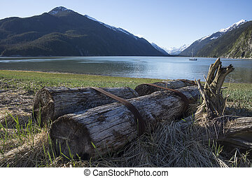 Taiyasanka Harbor Views - Logs left by logging operations in...